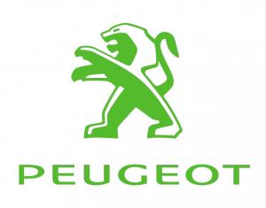 Peugeot Outil de voiture Timingset