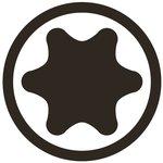 Embout 6,3 mm (1/4) profil T (pour Torx) T15