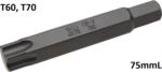 Longueur de trepan 75 mm 14 mm profil hexagonal externe T (pour Torx) T60