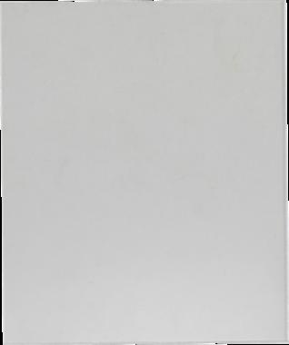Disque de rechange pour art. 3516, 8858